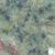 FredLou Granite Tropical Green